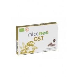 MICONEO GST