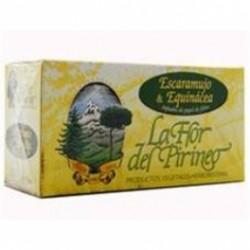 Escaramujo Y Equinacea Filtro La Flor Del Pirineo