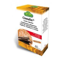CINNULIN DR DUNNER