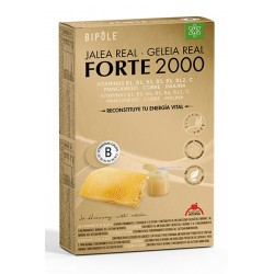 Jalea Real Forte 2000 Mg Bipole Intersa