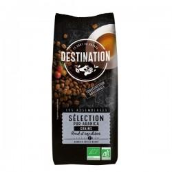 CAFE DESTINATION  1Kg PURO ARABICO GRANO
