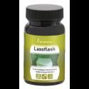LAXOFLASH - PLAMECA