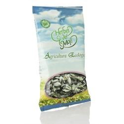 Salvia Hierba Herbes De Moli